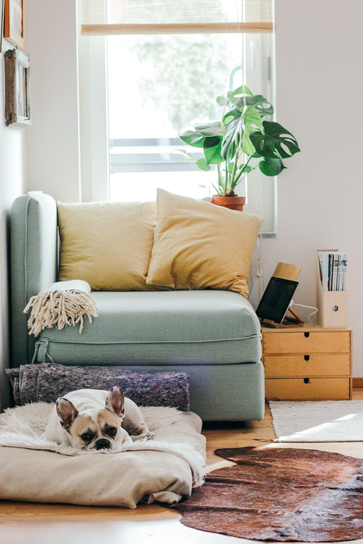 schone lucht in huis